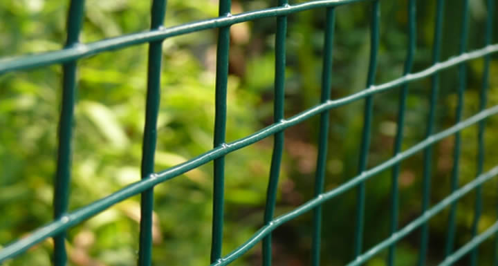 PVC Coated Welded Wire Mesh | Hebei Shuolong Metal Products Co., Ltd.